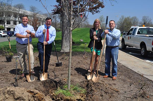 Supervisor and three councilmen with shovels at tree planting