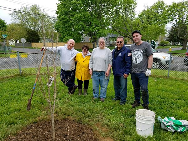 Five people standing around recently planted tree