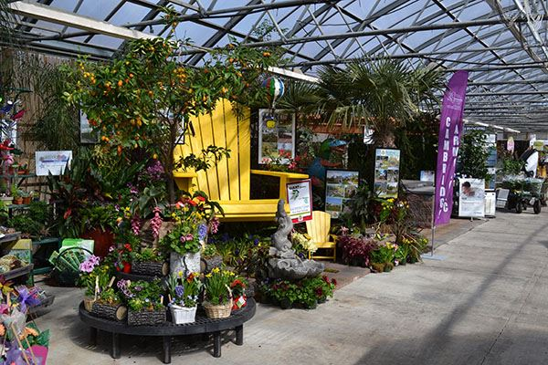 Interior of garden show with plants