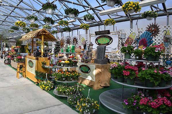 Interior of greenhouse prepped for garden show with plants